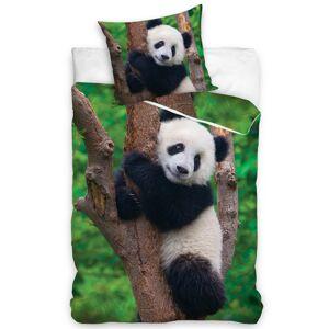 Tiptrade Bavlnené obliečky Medvedík Panda, 140 x 200 cm, 70 x 90 cm