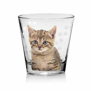 Cerve Pohár Cat 250 ml, 6 ks