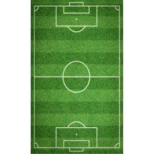 Tiptrade Detský uterák Futbalové ihrisko, 30 x 50 cm