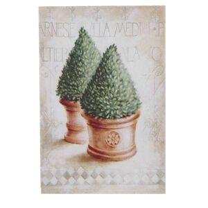 Obraz na plátne Thuja, 35 x 45 x 1 cm