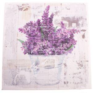 Obraz na plátne s levanduľou Vintage, 28 x 28 cm