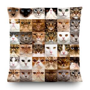 AG Art Vankúšik Cats, 45 x 45 cm