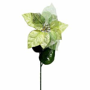 Vianočná ruža zlatá, 20 cm x 65 cm